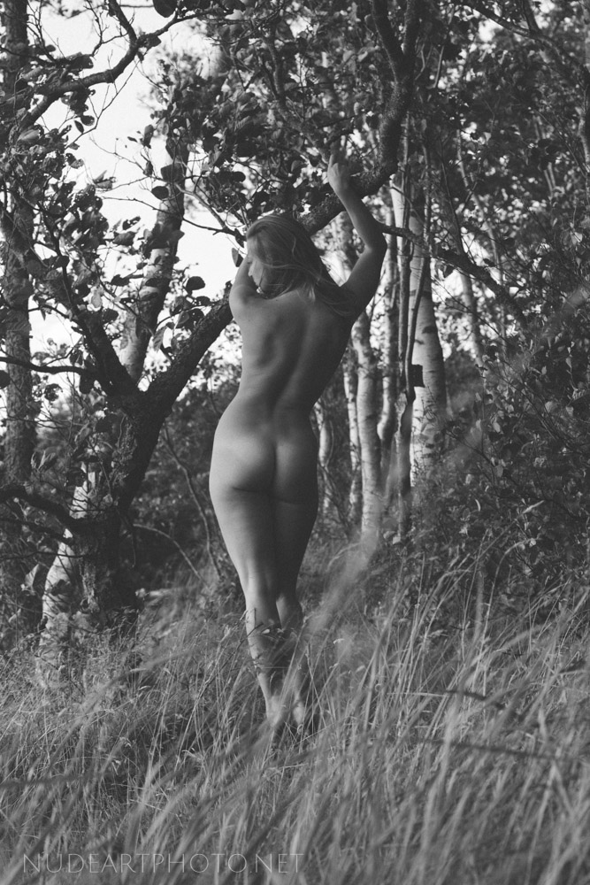 nude art bw in nature